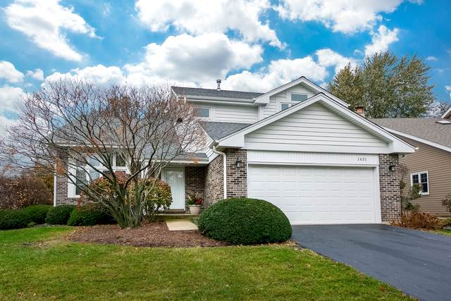 1631 Terri Circle, Naperville, IL 60563 (MLS #10678296) :: The Wexler Group at Keller Williams Preferred Realty