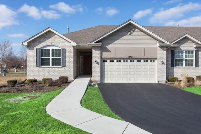 1250 Borego Circle #2, Bolingbrook, IL 60490 (MLS #10678334) :: The Wexler Group at Keller Williams Preferred Realty