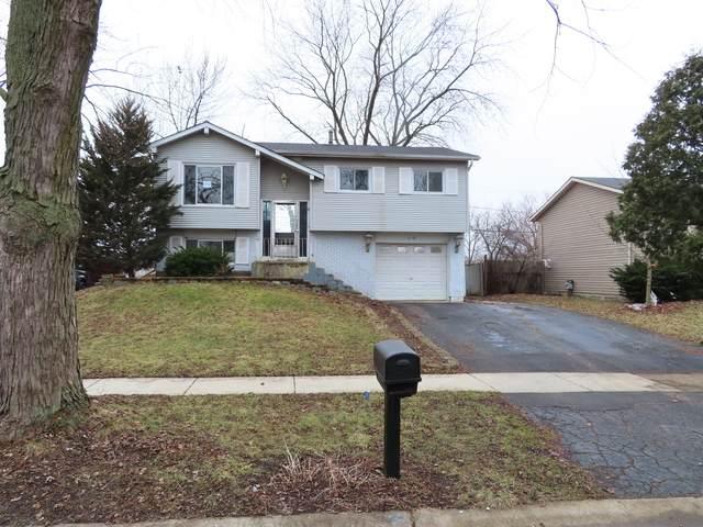 217 Malibu Drive, Bolingbrook, IL 60440 (MLS #10678551) :: The Wexler Group at Keller Williams Preferred Realty