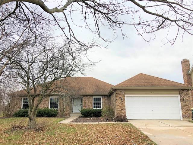110 Grays Court, Oswego, IL 60543 (MLS #10678558) :: Property Consultants Realty