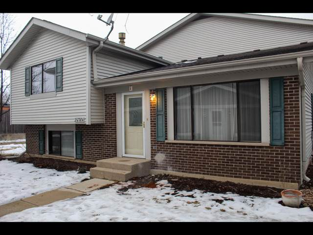 2S738 Winchester Circle 40-1, Warrenville, IL 60555 (MLS #10678765) :: Property Consultants Realty