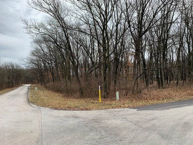 700-798 Old Mud Road, Crete, IL 60417 (MLS #10679044) :: Property Consultants Realty