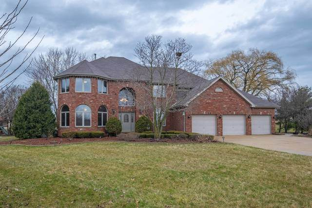 7342 W James Lane, Monee, IL 60449 (MLS #10679188) :: Helen Oliveri Real Estate
