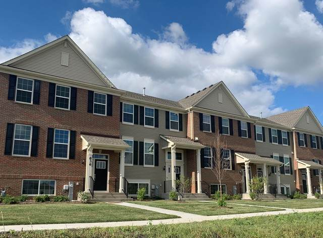 719 Springside Court, Oswego, IL 60543 (MLS #10679228) :: Property Consultants Realty