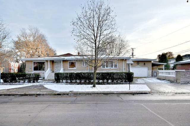 1644 N 74th Court, Elmwood Park, IL 60707 (MLS #10679376) :: Property Consultants Realty