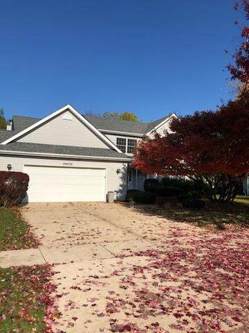 24238 S Pueblo Drive, Channahon, IL 60410 (MLS #10679395) :: The Wexler Group at Keller Williams Preferred Realty