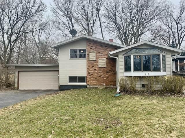 214 E Kimball Avenue, Woodstock, IL 60098 (MLS #10679466) :: Helen Oliveri Real Estate