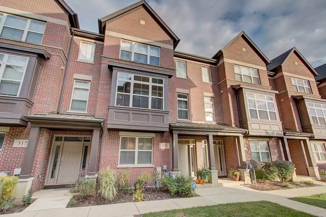 317 Alpine Springs Drive, Vernon Hills, IL 60061 (MLS #10679528) :: Ryan Dallas Real Estate