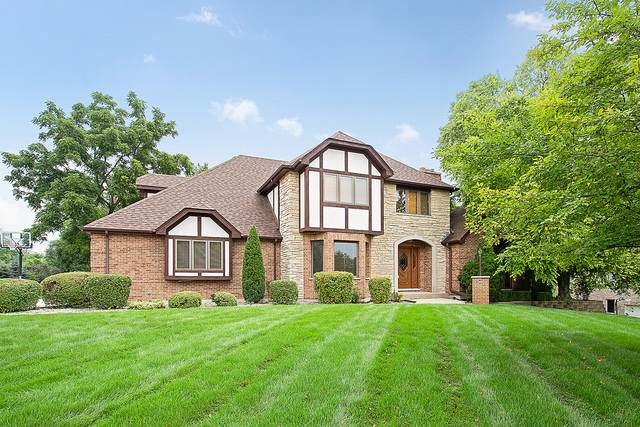 13110 Da Vinci Street, Lemont, IL 60439 (MLS #10679576) :: Touchstone Group