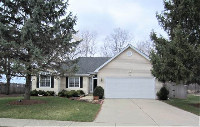 989 Amberwood Place, Mchenry, IL 60050 (MLS #10679723) :: Ryan Dallas Real Estate