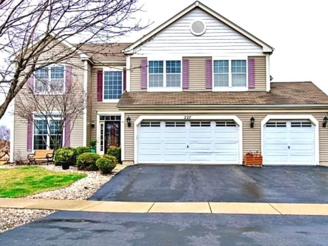 227 Stonegate Road, Bolingbrook, IL 60440 (MLS #10679942) :: Angela Walker Homes Real Estate Group