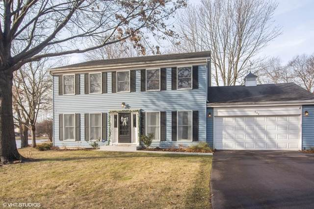 844 S Elm Street, Palatine, IL 60067 (MLS #10679958) :: The Wexler Group at Keller Williams Preferred Realty