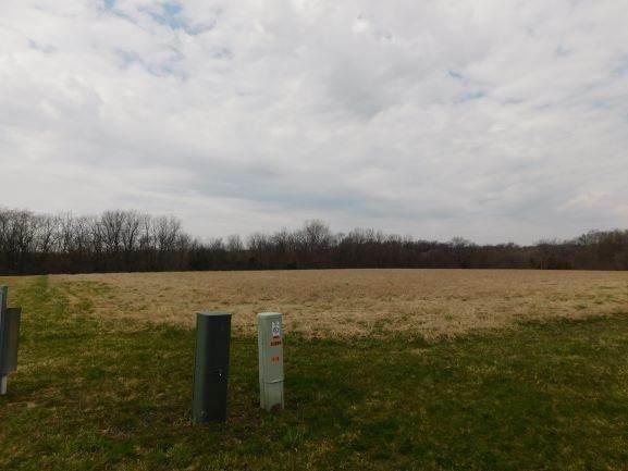 1575 Deer Path Lane, Franklin Grove, IL 61031 (MLS #10680227) :: Helen Oliveri Real Estate
