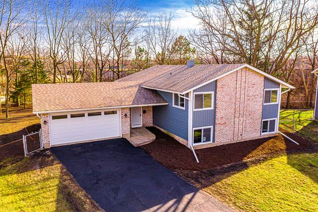 5 Wolfe Court, Woodridge, IL 60517 (MLS #10680511) :: Ryan Dallas Real Estate