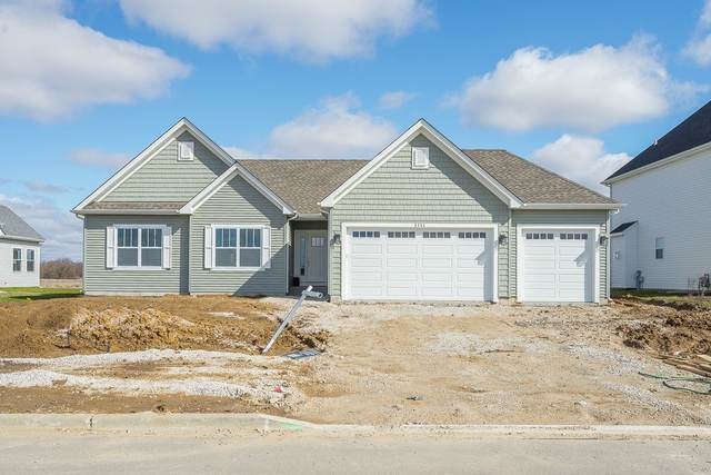 1111 Blackberry Shore Lane, Yorkville, IL 60560 (MLS #10680638) :: Property Consultants Realty