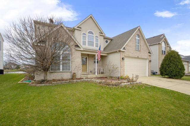 222 Violet Drive, Romeoville, IL 60446 (MLS #10680757) :: Property Consultants Realty