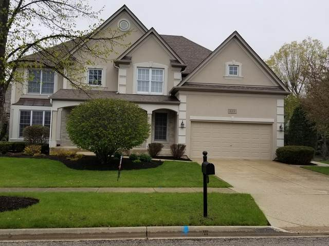 633 Waterside Drive, South Elgin, IL 60177 (MLS #10680982) :: Knott's Real Estate Team