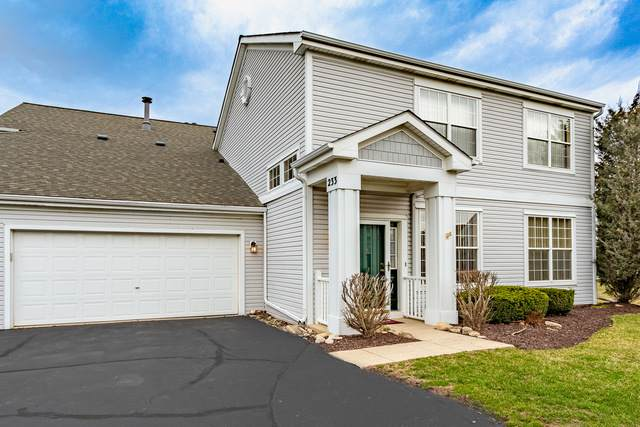 233 Grays Drive #233, Oswego, IL 60543 (MLS #10680987) :: Property Consultants Realty