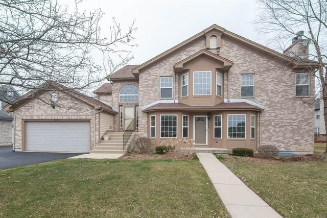 728 Kresswood Drive, Mchenry, IL 60050 (MLS #10681039) :: Helen Oliveri Real Estate