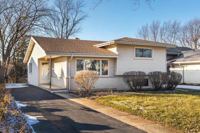 232 S Ellyn Avenue, Glen Ellyn, IL 60137 (MLS #10681104) :: The Wexler Group at Keller Williams Preferred Realty
