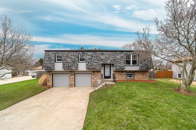 24216 Marble Road, Channahon, IL 60410 (MLS #10681361) :: Touchstone Group