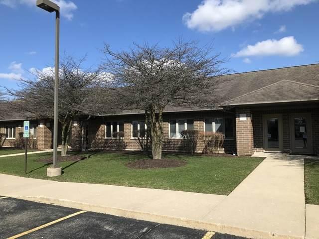 735 Mcardle Drive D, Crystal Lake, IL 60014 (MLS #10681484) :: Helen Oliveri Real Estate