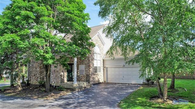 451 W Parkside Drive, Palatine, IL 60067 (MLS #10682057) :: Baz Network   Keller Williams Elite