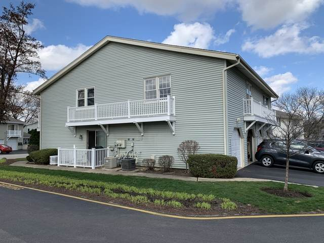 209 Dartmouth Court D, Bloomingdale, IL 60108 (MLS #10682058) :: BN Homes Group