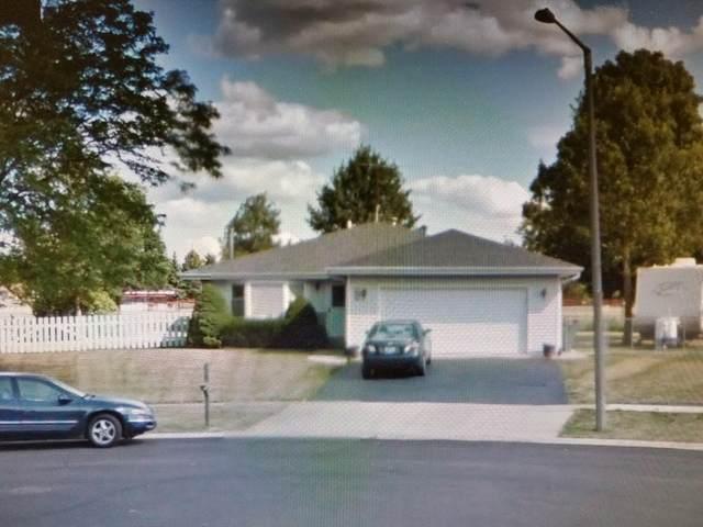 736 Schoolgate Road, New Lenox, IL 60451 (MLS #10682151) :: Century 21 Affiliated
