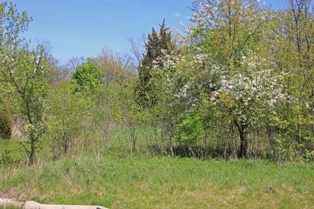 39587 Orchard Bluff Lane - Photo 1