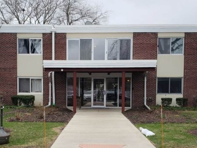 127 N Wolf Road 45B47B, Wheeling, IL 60090 (MLS #10682455) :: Helen Oliveri Real Estate