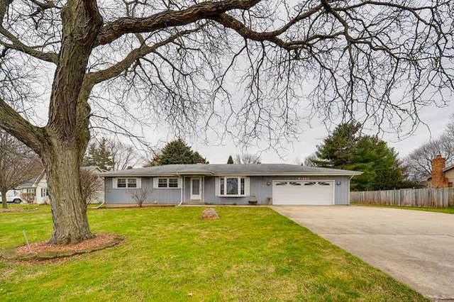 9N960 S Water Road, Elgin, IL 60124 (MLS #10682576) :: Knott's Real Estate Team