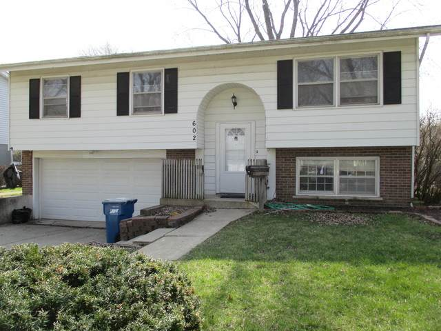 602 S 5th Street, West Dundee, IL 60118 (MLS #10682608) :: Knott's Real Estate Team