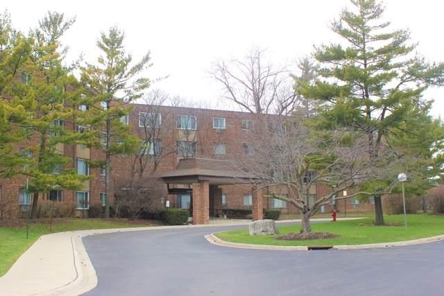 1500 Robin Circle #305, Hoffman Estates, IL 60194 (MLS #10682612) :: Knott's Real Estate Team