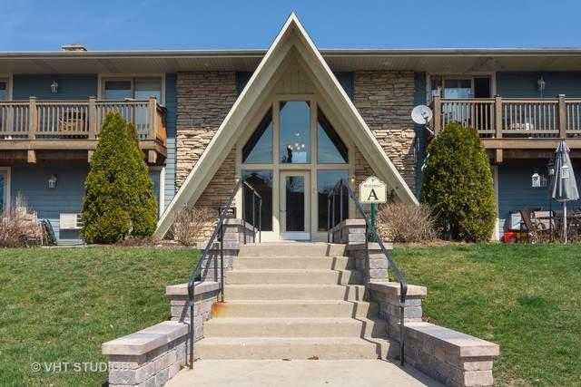 300 Opatrny Drive #203, Fox River Grove, IL 60021 (MLS #10682666) :: Lewke Partners