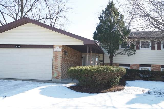 435 W Newport Road, Hoffman Estates, IL 60169 (MLS #10682669) :: Knott's Real Estate Team