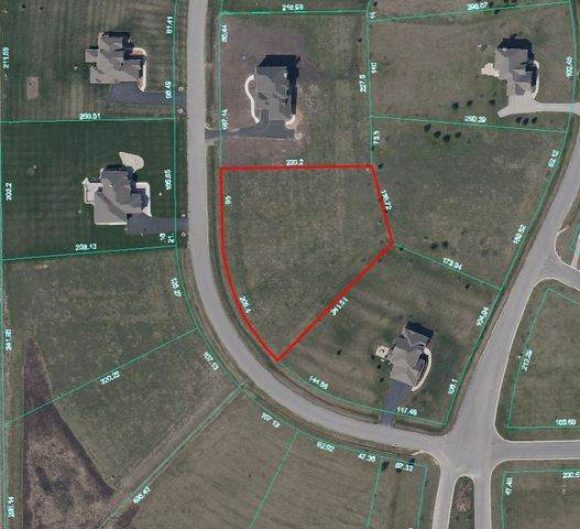 13151 Charleston Street, Caledonia, IL 61011 (MLS #10682791) :: Property Consultants Realty