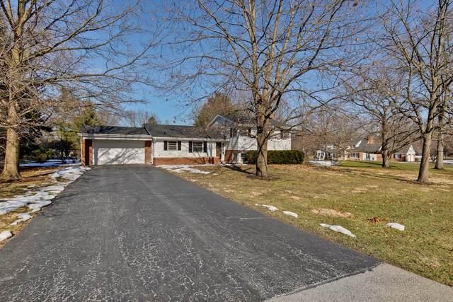 3264 Monticello Lane, Long Grove, IL 60047 (MLS #10682850) :: Helen Oliveri Real Estate