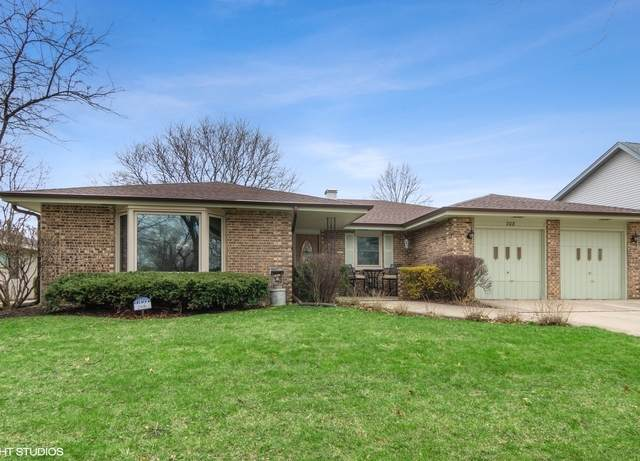 208 Glenridge Lane, Schaumburg, IL 60193 (MLS #10682860) :: BN Homes Group