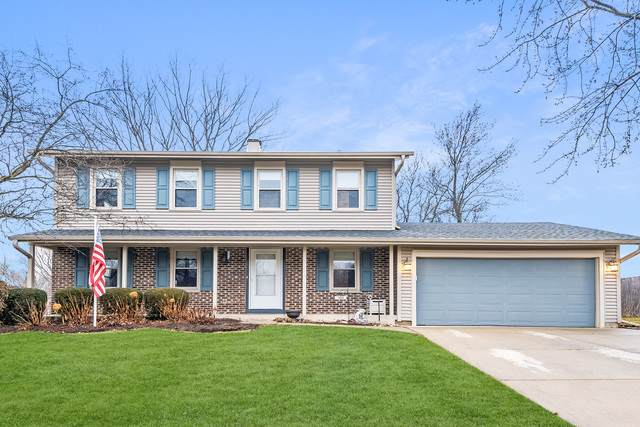 1850 Ridgewood Lane, Hoffman Estates, IL 60192 (MLS #10682962) :: Knott's Real Estate Team