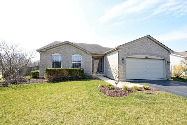 7210 Waterman Drive, Plainfield, IL 60586 (MLS #10683069) :: Jacqui Miller Homes