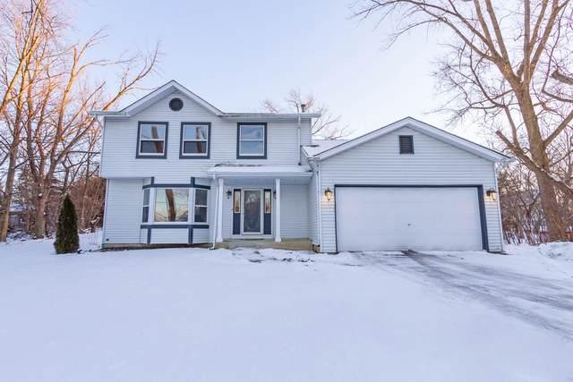 1041 W Palatine Road, Palatine, IL 60067 (MLS #10683071) :: Helen Oliveri Real Estate