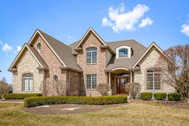 11102 Venezia Drive, Frankfort, IL 60423 (MLS #10683207) :: BN Homes Group