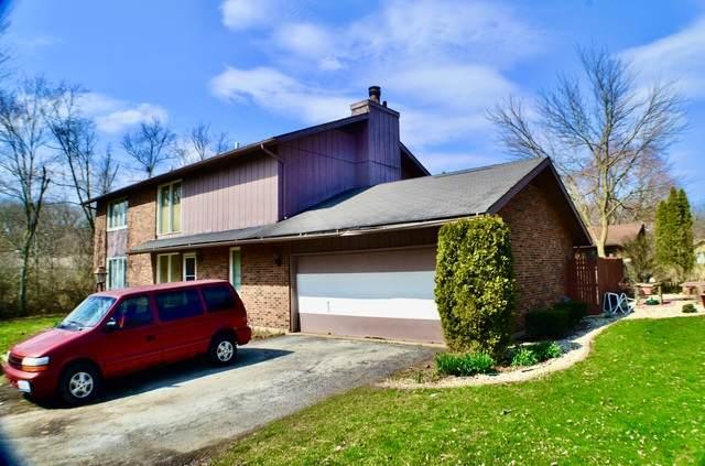 1015 Sierra Court, University Park, IL 60466 (MLS #10683291) :: Jacqui Miller Homes