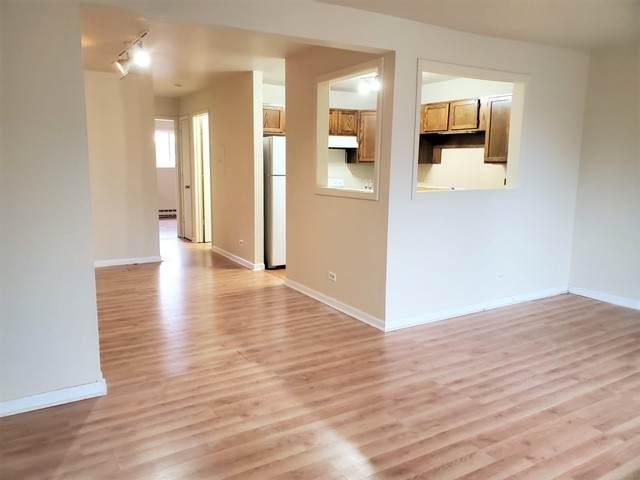4037 Bonhill Drive 2B, Arlington Heights, IL 60004 (MLS #10683460) :: The Dena Furlow Team - Keller Williams Realty