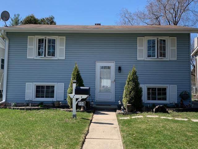 554 California Avenue N, Mundelein, IL 60060 (MLS #10683842) :: Helen Oliveri Real Estate