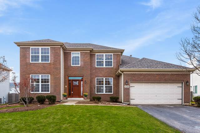 25245 Trelliage Avenue, Plainfield, IL 60585 (MLS #10683912) :: Berkshire Hathaway HomeServices Snyder Real Estate