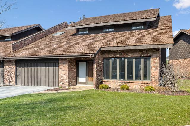 11 Lucas Drive, Palos Hills, IL 60465 (MLS #10683957) :: Property Consultants Realty