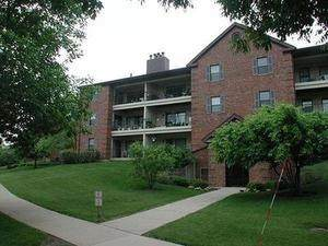 671 Hapsfield Lane #201, Buffalo Grove, IL 60089 (MLS #10684143) :: Lewke Partners
