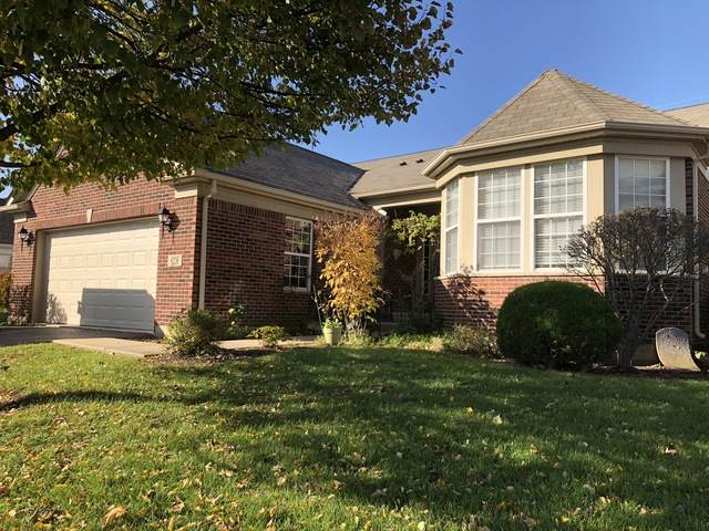 9236 Dunmore Drive, Orland Park, IL 60462 (MLS #10684191) :: Century 21 Affiliated